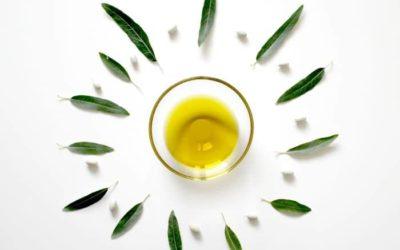 Aceite de Oliva Ecológico, el agrosistema donde ganamos todos (y en especial el medio ambiente)